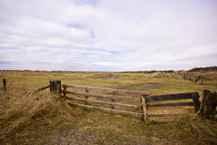 Fence in the meadow,. Texel, Holland Royalty Free Stock Photos