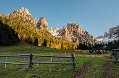 Fence in meadow in the Dolomites Royalty Free Stock Image