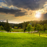 Fence on meadow near forest at sunset Stock Photography