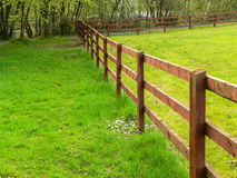 Fence between meadows Royalty Free Stock Images