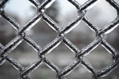 Fence mesh covered with ice, royalty free stock photo
