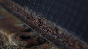 The fence mesh is covered with rust. Corrosion of metal. Harmful effects of oxygen and water on the metal. Iron rust. Oxidation of metals stock footage