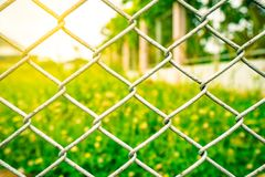 The fence mesh netting on blurred yellow flower field royalty free stock photography