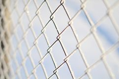Close up fence of Rabitz is covered with frost royalty free stock photos