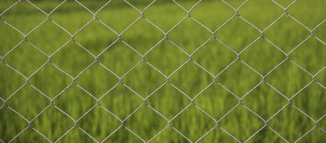 Fence Royalty Free Stock Photography