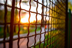 Fence with metal grid in perspective Stock Photos