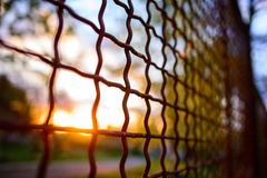 Fence with metal grid in perspective Royalty Free Stock Photo