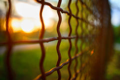 Fence with metal grid in perspective Stock Image