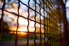 Fence with metal grid in perspective Royalty Free Stock Photos