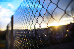 Fence with metal grid in perspective Royalty Free Stock Photography