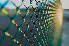 Fence with metal grid in perspective Royalty Free Stock Image