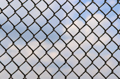 Fence of metallic net. And blue sky Stock Photography