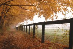 Fence mist Royalty Free Stock Images