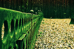 The fence at the monument. Long cast-iron fence at the monument in the forest Stock Photography