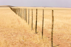 Fence in Namibian desert royalty free stock photography