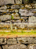 Fence and narrow path along wet stone wall Stock Image