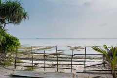 Fence near the tropical beach at the Fenfushi island. In Maldives royalty free stock image