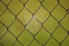 Fence net Stock Photo