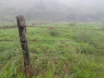 Fence at Ocean View Royalty Free Stock Images