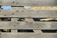 Fence from old boards, rough with nails Royalty Free Stock Photo