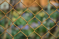 Fence. Old iron fence. Obstacle. Background Stock Image