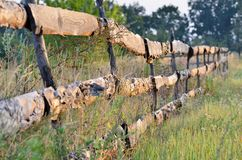 Fence of old planks in the garden in the field royalty free stock photo