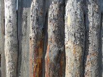 Fence of wooden boards. Fence of old wooden boards royalty free stock photography