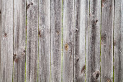 Fence from old wooden planks. Wood texture - fence from old wooden planks stock image