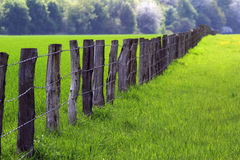 Fence over farmland 03. Row of posts from the foreground to the background Stock Photography
