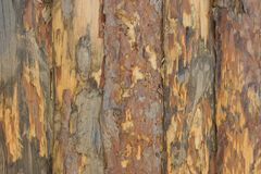 Fence, palings of unrefined wood. The Russian village Stock Photography