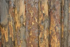 Fence, palings of unrefined wood. The Russian village Royalty Free Stock Images