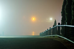 Fence in the park at foggy night. Fence and cypress trees in the park by the river at foggy winter night stock photography