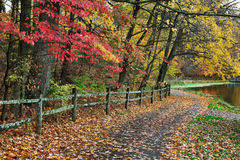 Fence And Path In Autumn Royalty Free Stock Photo