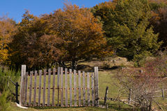 Fence and path in autumn Stock Photos