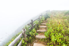 Fence and pathway on mountain. Old wood fence and pathway on mountain with fog Royalty Free Stock Images