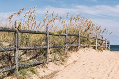Fence on Pathway to Beach at Sandbridge Royalty Free Stock Photo