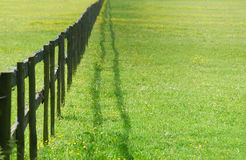Free Fence Perspective Royalty Free Stock Photos - 5305078