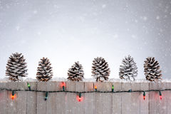 Fence With Pine Cones Royalty Free Stock Photos