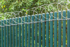 Fence Poles Razor Wire Royalty Free Stock Photo