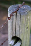 Fence Post Stock Image