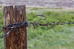 Fence post. Close-up of a fence post with barb wire in focus Stock Photo