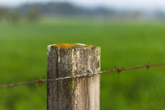 Fence Post Stock Images