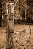 Fence Post and Barbed Wire. With Forest Background, sepia toned Stock Photography