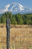 Fence Post with Knot Hole Stock Image