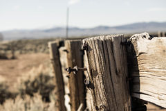 Fence post Royalty Free Stock Image