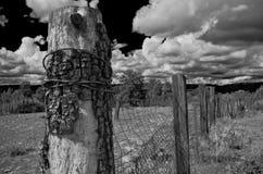 Fence Post, Payson, AZ Royalty Free Stock Photography