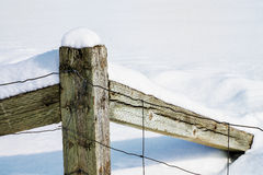 Fence post in snow royalty free stock image