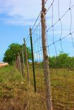 Fence Post Royalty Free Stock Photography