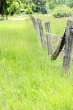 Fence Posts Stock Photo