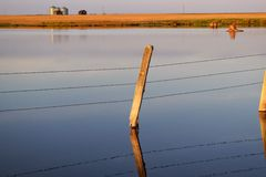 Fence Post in the water Stock Photography